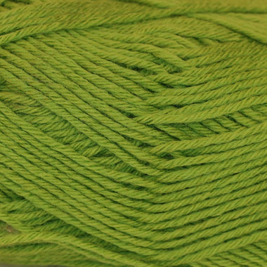 Paradise Fibers Yarn Regia Active Yarn - Apple Green