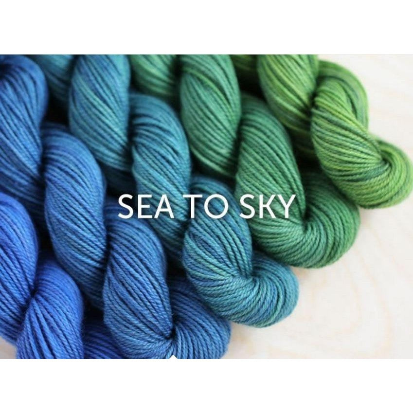 Sweet Georgia Yarns Party of Five Mini-Skein Sets Sea to Sky - 8