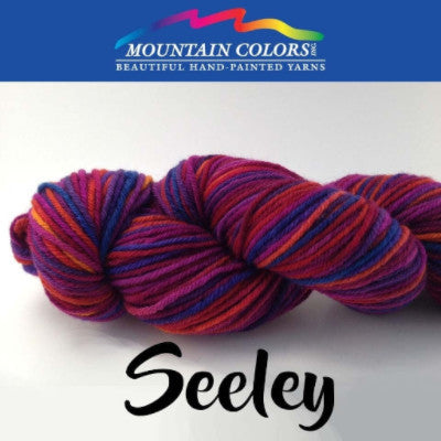 Mountain Colors Twizzlefoot Yarn Seeley - 69