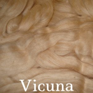 Eco Butterfly Organic Pakucho Cotton Roving Vicuna - 9