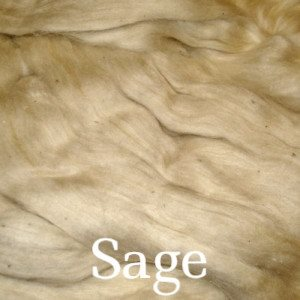 Eco Butterfly Organic Pakucho Cotton Roving Sage - 15