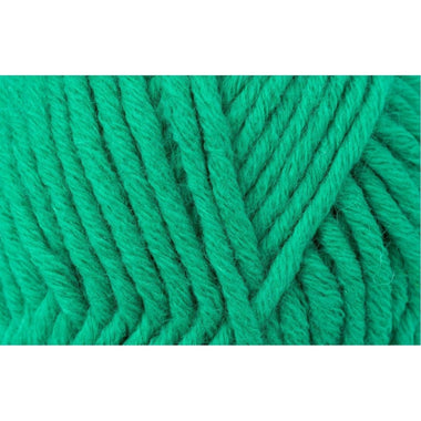 Paradise Fibers Schachenmayr Boston Yarn - Jade