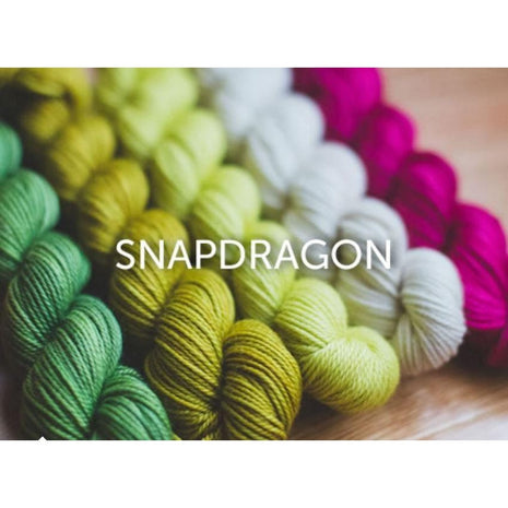 Sweet Georgia Yarns Party of Five Mini-Skein Sets Snapdragon - 12