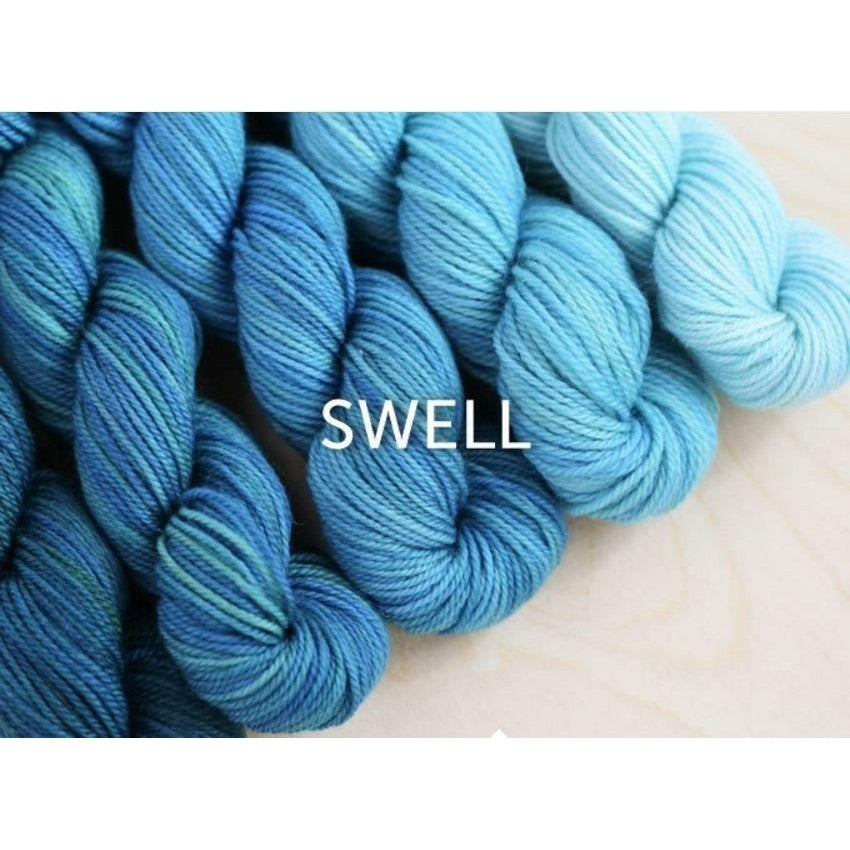 Sweet Georgia Yarns Party of Five Mini-Skein Sets Swell - 7