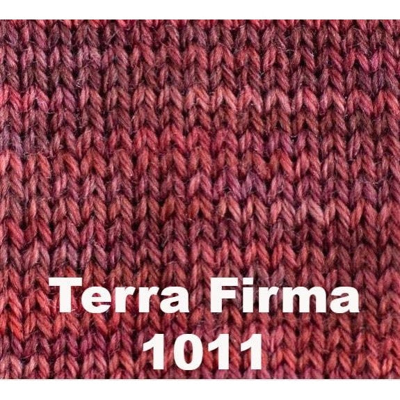 Paradise Fibers Yarn Sweet Georgia Tough Love Sock - Semi Solids Terra Firma 1011 - 39