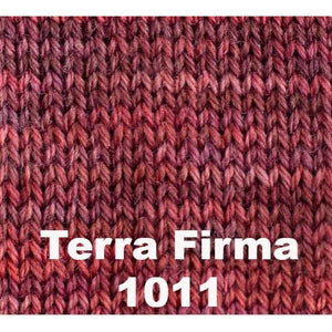 Sweet Georgia Tough Love Sock - Semi Solids-Yarn-Terra Firma 1011-