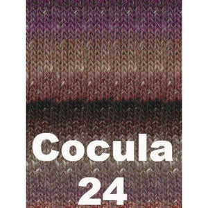 Noro Transitions Yarn Cocula 24 - 6