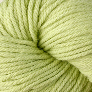 Berroco Vintage Chunky weight yarn in the color Kiwi 6124, a light spring green.