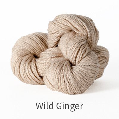 Paradise Fibers Yarn The Fibre Co. Canopy Fingering Yarn Wild Ginger - 7