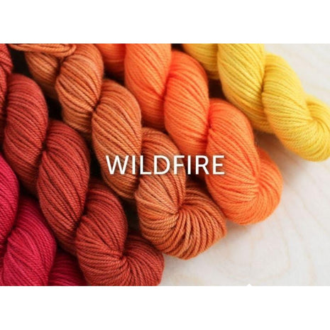 Sweet Georgia Yarns Party of Five Mini-Skein Sets Wildfire - 10
