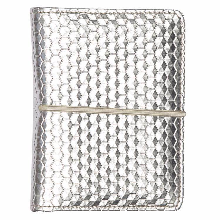 Multiple Passport Holder Silver and Blue
