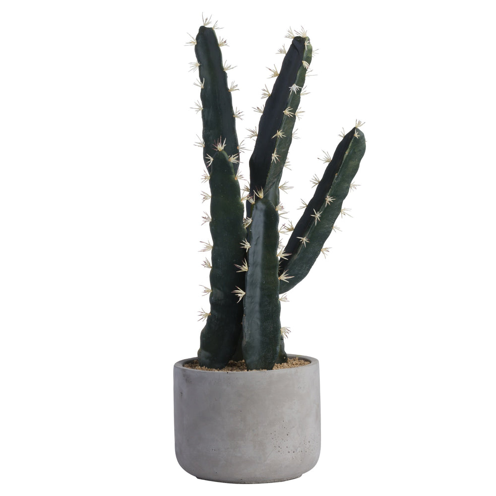 Large Cacti In Concrete Pot - Artificial Plant