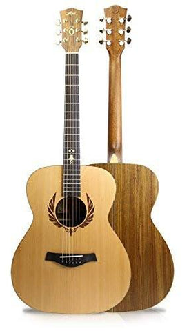 Fina Round Body Auditorium Acoustic Guitar with Solid Cedar Top & Satin Finish - 1to1 Music