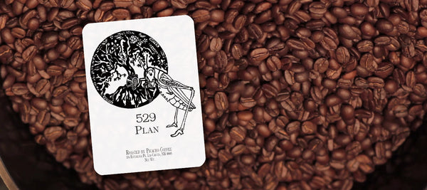 Sommelier Crafted Specialty Coffee Blends