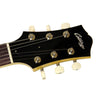 Used Collings 290 DC