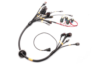 Wire Looms - Race Spec Nissan R35 GT1R Ultra Engine Loom Package