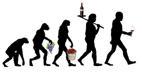 Wine Evolution