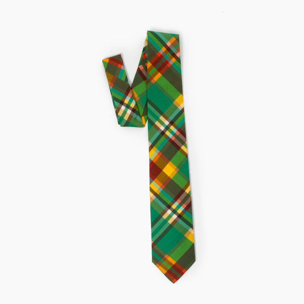 The Pet Sounds Self Tipped Tie