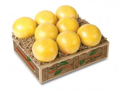 White Grapefruit - 3 Gift Trays