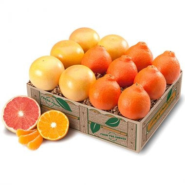 Honeybells & Grapefruit - 3 Trays + Deluxe It!