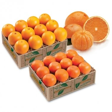Mandarin & Navel Oranges - 2 Trays + Deluxe it!