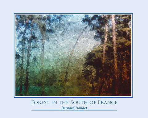 FOREST IN THE SOUTH OF FRANCE POSTER