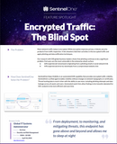 SentinelOne and Encrypted Traffic
