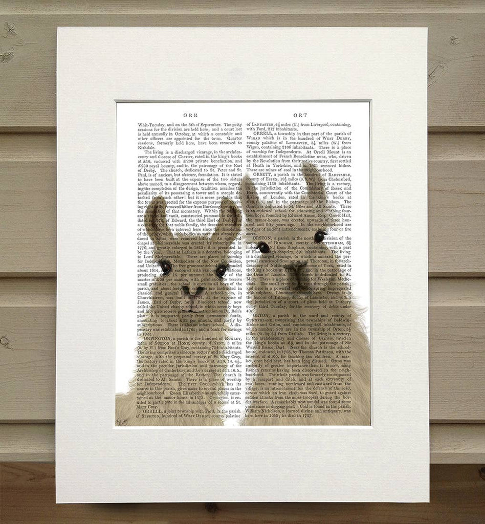 Llama Duo - Real Antique Book Page Matted Print