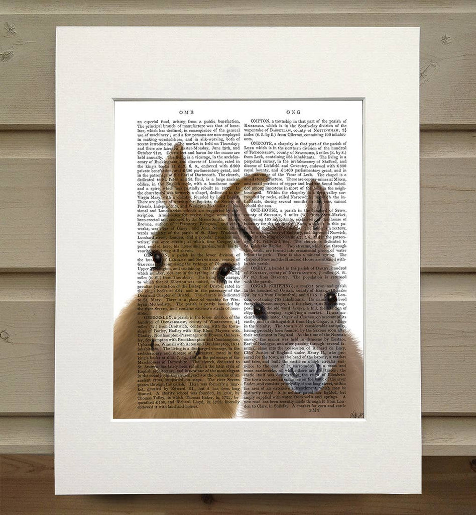 Donkey Duo - Real Antique Book Page Matted Print