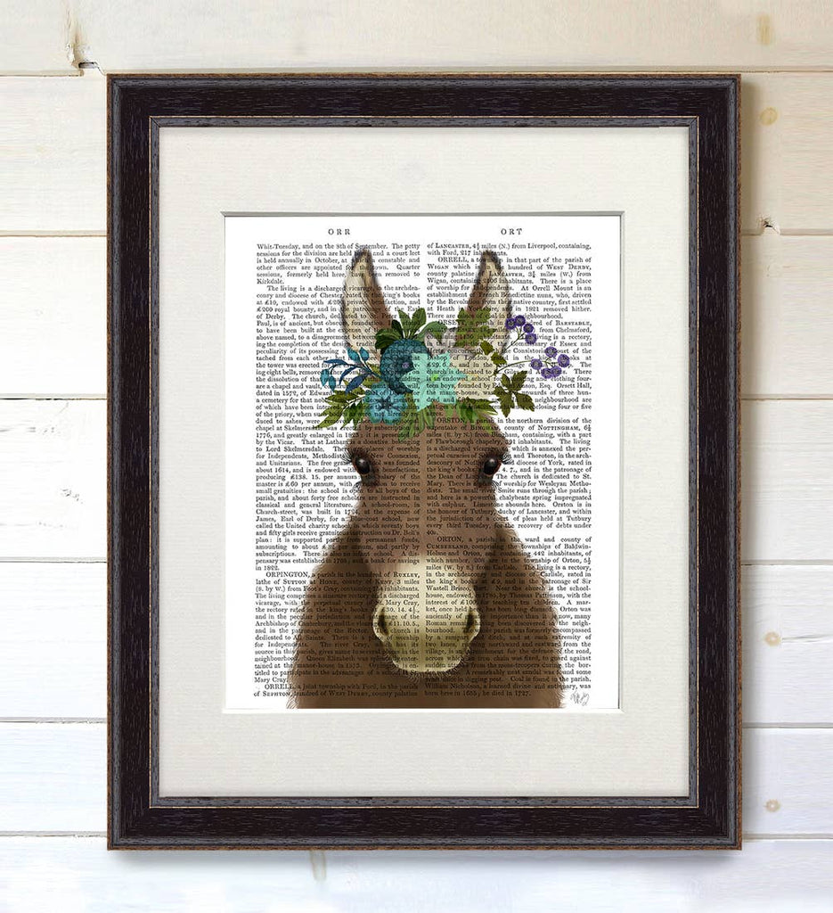 Bohemian Donkey - Real Antique Book Page Matted Print