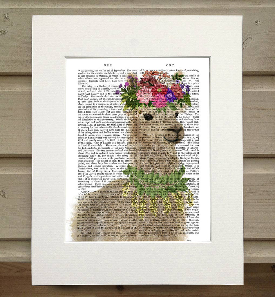Bohemian Llama - Real Antique Book Page Matted Print