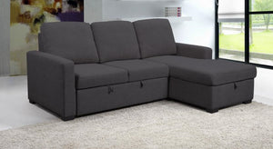 Domenico Sectional with Flip up Sofabed