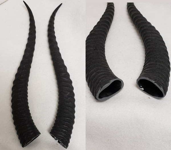 Sable Antelope Horns