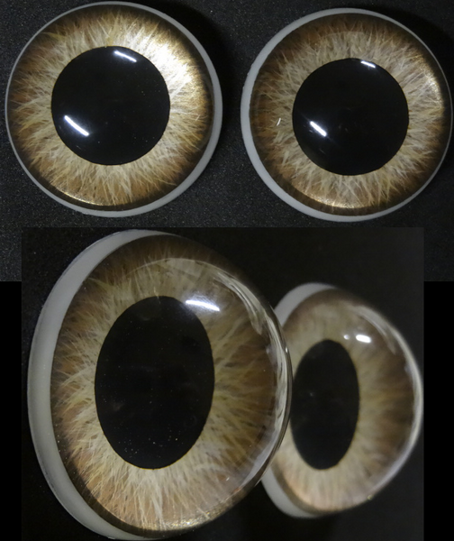 "Detailed Painted 3D ""Following"" Resin Eyes"