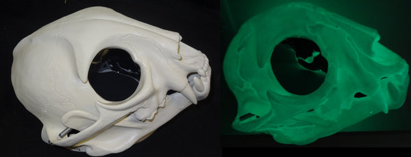 Glow in the Dark Skeletal Feline Cut and Hinged Mask
