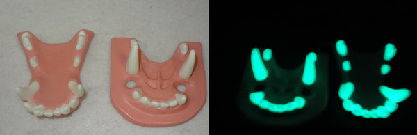 Two Colored Glow in the Dark Large K9 Jawset