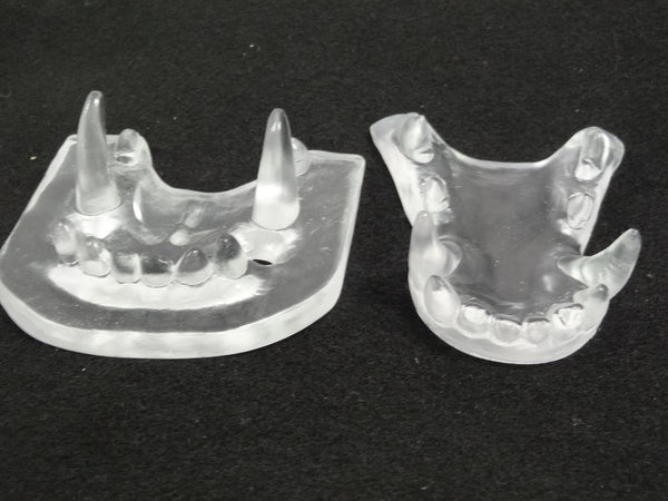 Clear Large K9 Jawset