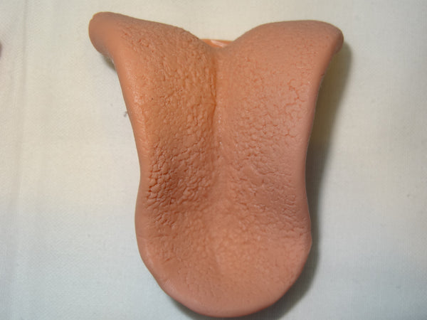 Silicone Big Cat Tongue