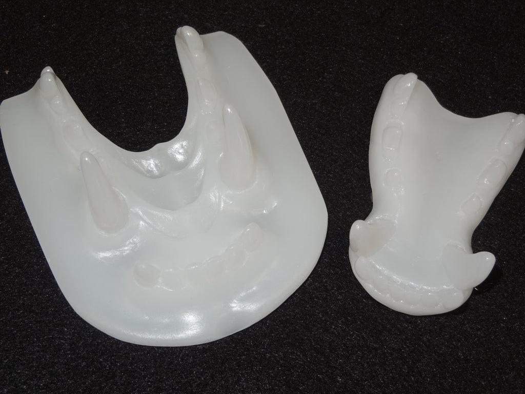 Clear Small K9 Jawset