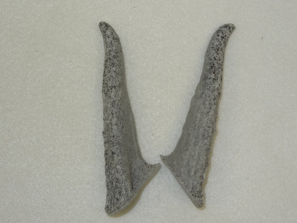Granite Large Rigid Antler Tips