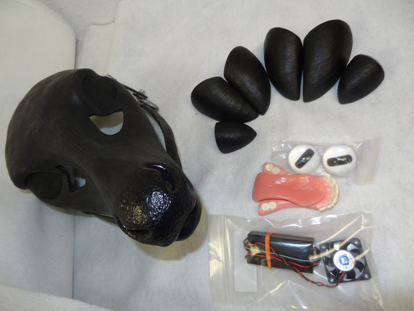 Whitetail Doe Deluxe Resin Kit