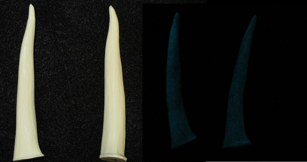 Glow in the Dark Large Smooth Antler Tips