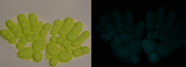 Silicone Glow in the Dark Reptile Handpads