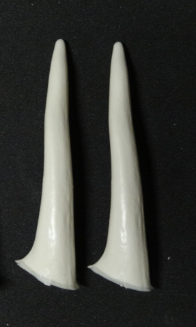 Medium Smooth Antler Tips