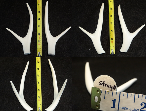 Straight Four Point Deer Antlers