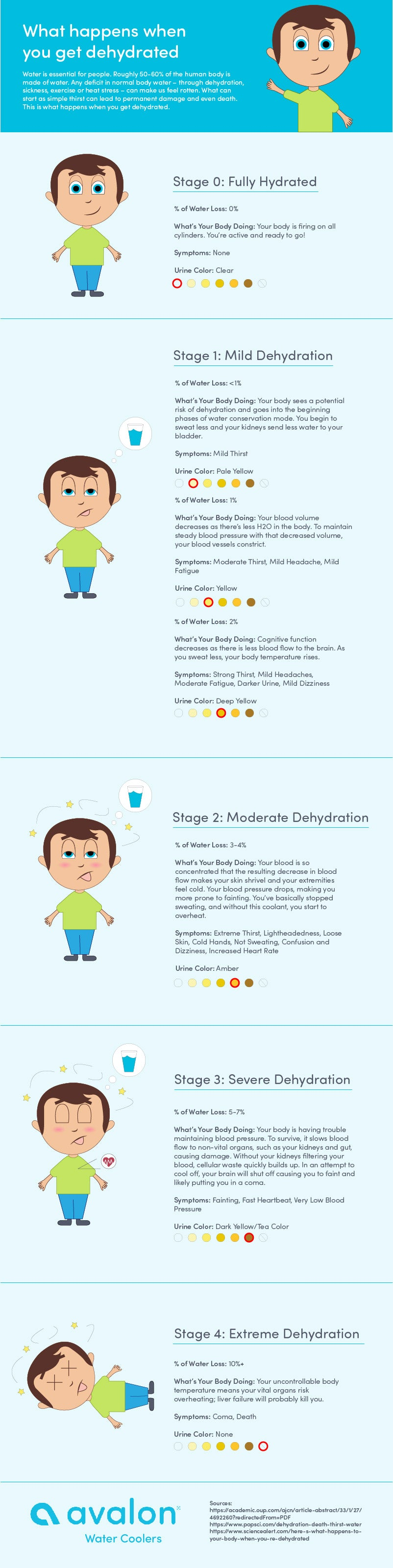 What Happens when your dehydrated? Dehydration Infographic