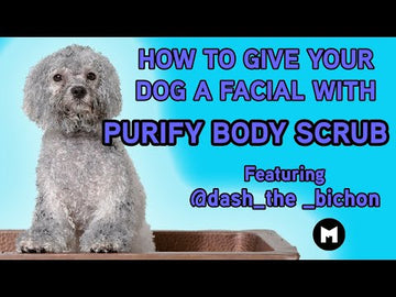 Purify Dog Scrub 200 G