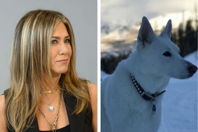 Jennifer Aniston Honors Late Rescue Dog With Beautiful Necklace