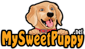 Mary Nielsen Owner of My Sweet Puppy Reviews the Sweet Potato Recipe
