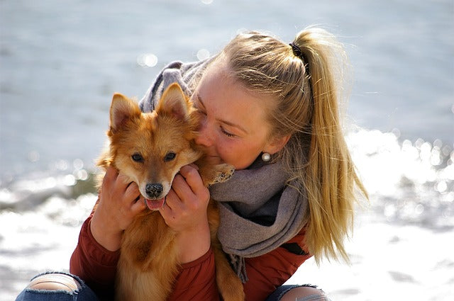 11 Signs You're More Than a Dog Owner, You're a Pup Parent